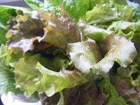2008_0506nagasaki0032.JPG